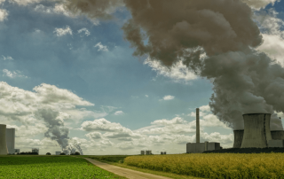 carbon credit market