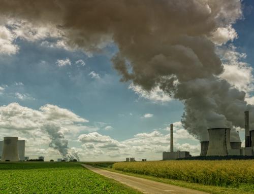 Mercado voluntario y mercado obligatorio de créditos de carbono