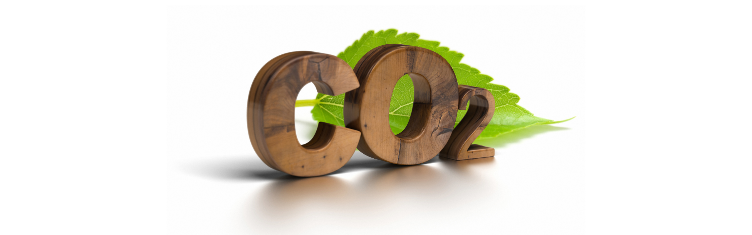 how-to-calculate-the-carbon-footprint
